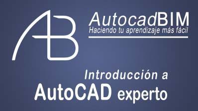 AutoCAD nivel experto (99€)